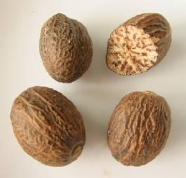 انواع البهارات مصورة وجميع الخلطات السحرية (1) Nutmeg